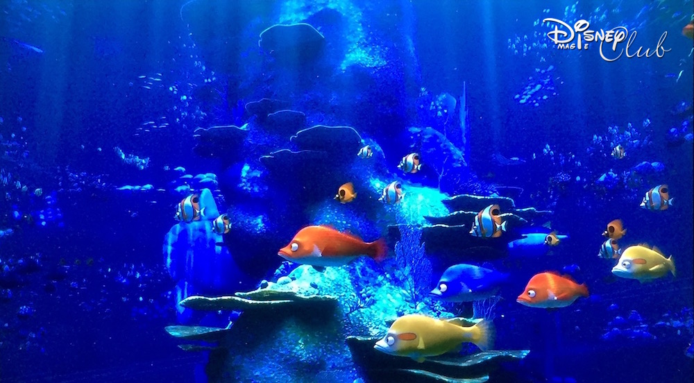 Le Monde de Dory : Aquarium Grand Large
